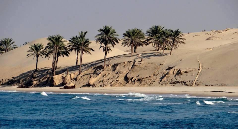 إستكمال البنية القومية لتنمية شمال سيناء