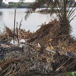 مواصلة حملات إزالة التعديات على كافة المجاري المائية