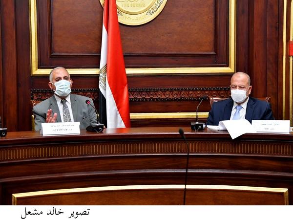 الدكتور عبد العاطي يشارك فى اجتماع لجنة الدفاع والأمن القومي بمجلس الشيوخ